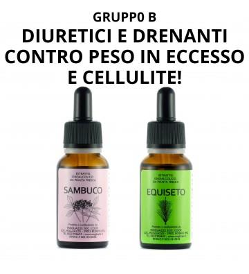 Carciofo + Tarassaco